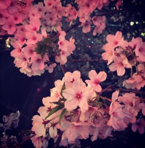 Screenshot_2015-04-06-16-55-14